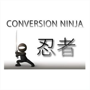 Conversion Ninja - Perfektion Leadgenerierung