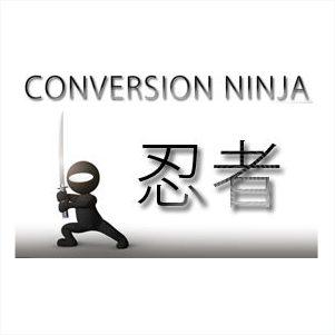 Conversion Ninja - Perfektion Leadgenerierung