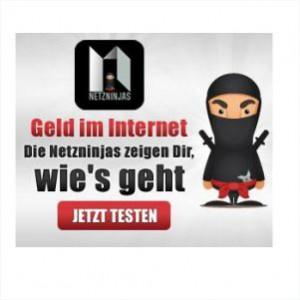 Geld im Internet verdienen mit den Netzninjas